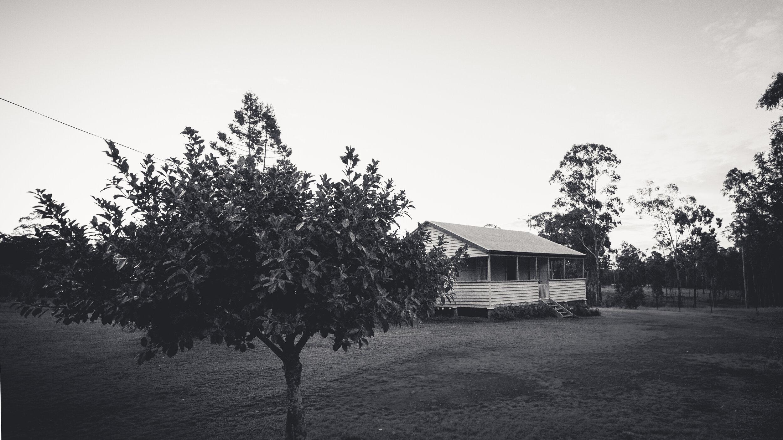 FarmB&W-21.jpg