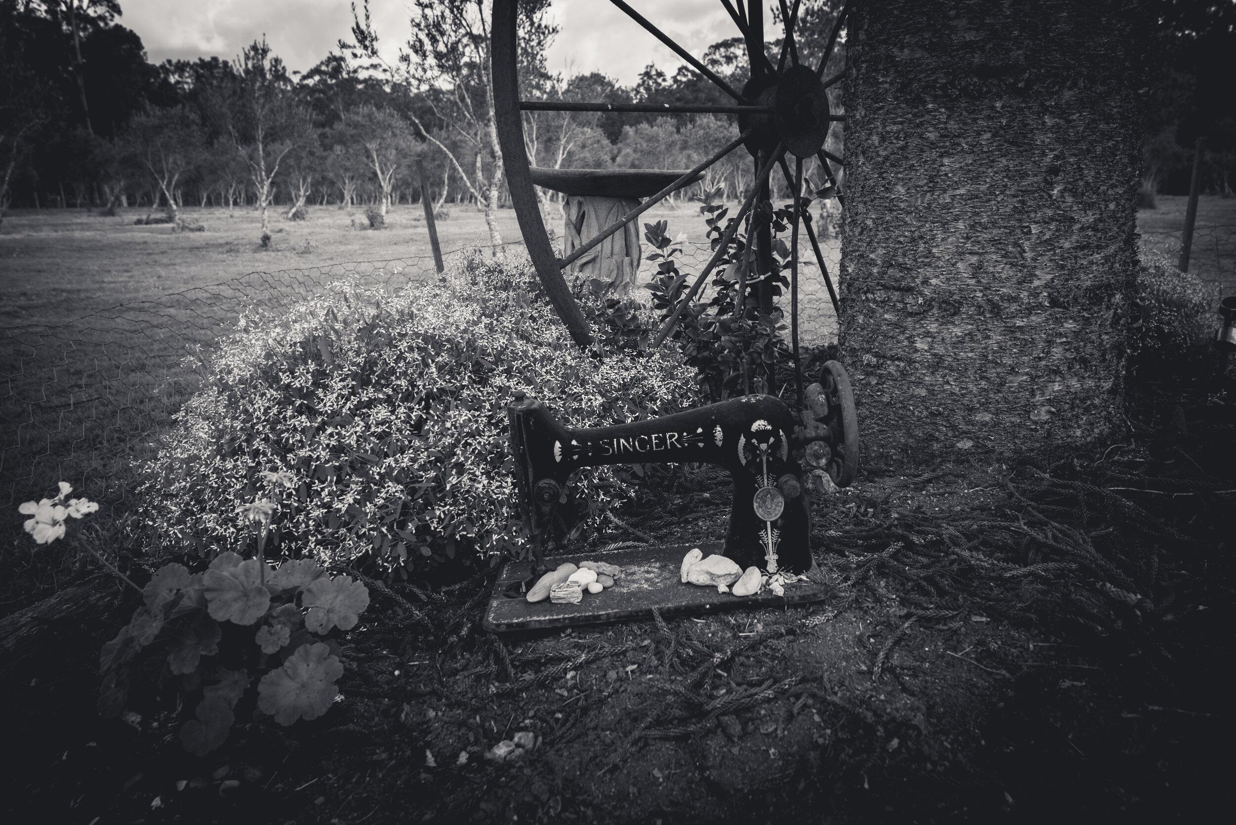 FarmB&W-27.jpg