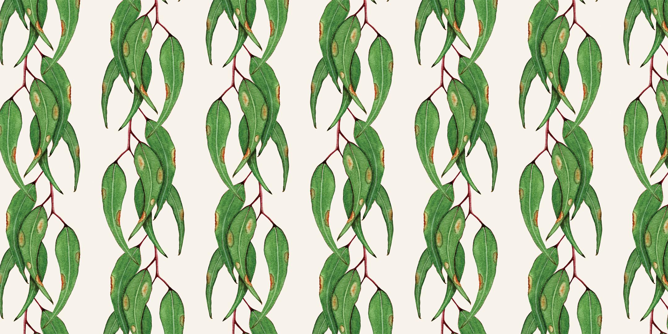Painted Gum Leaves -