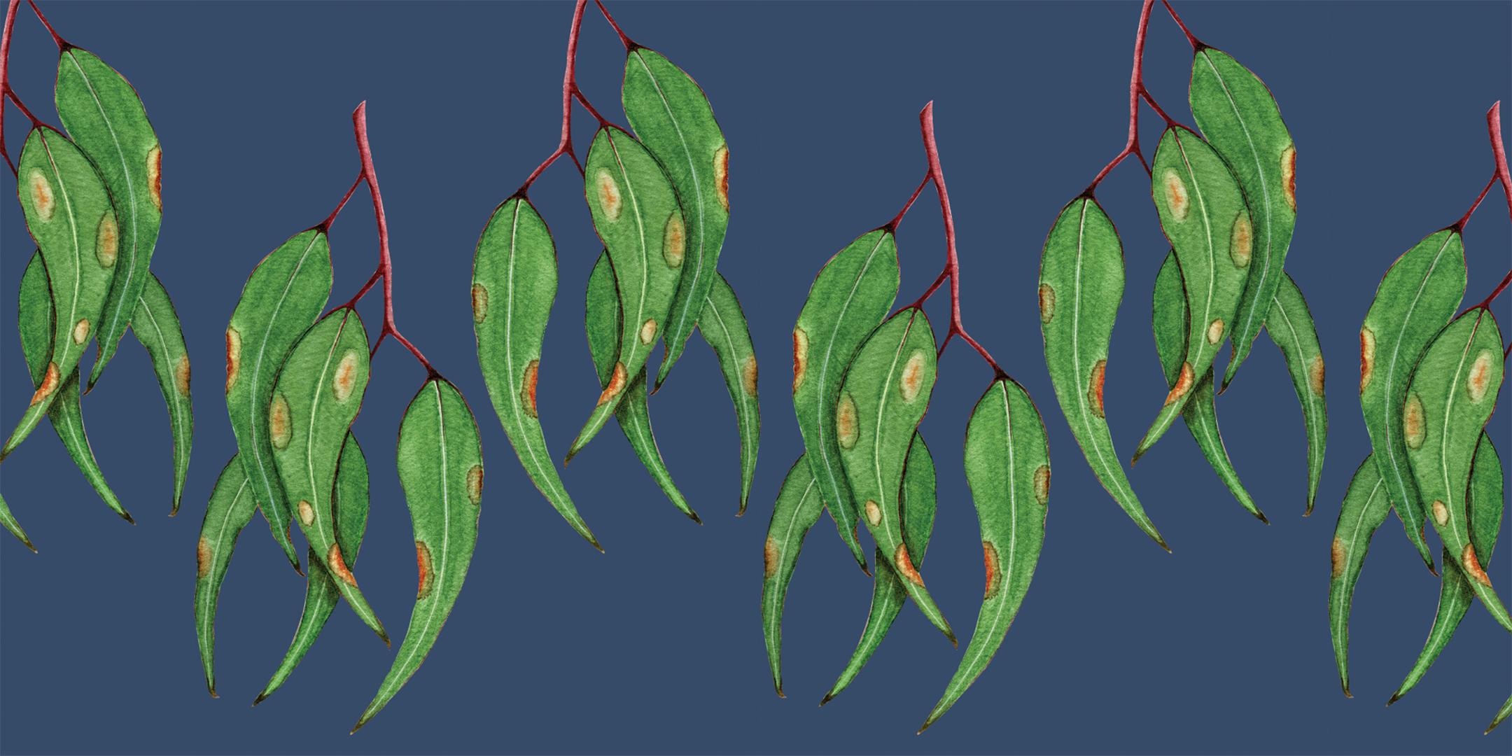 Painted Gum Leaves - MURAL