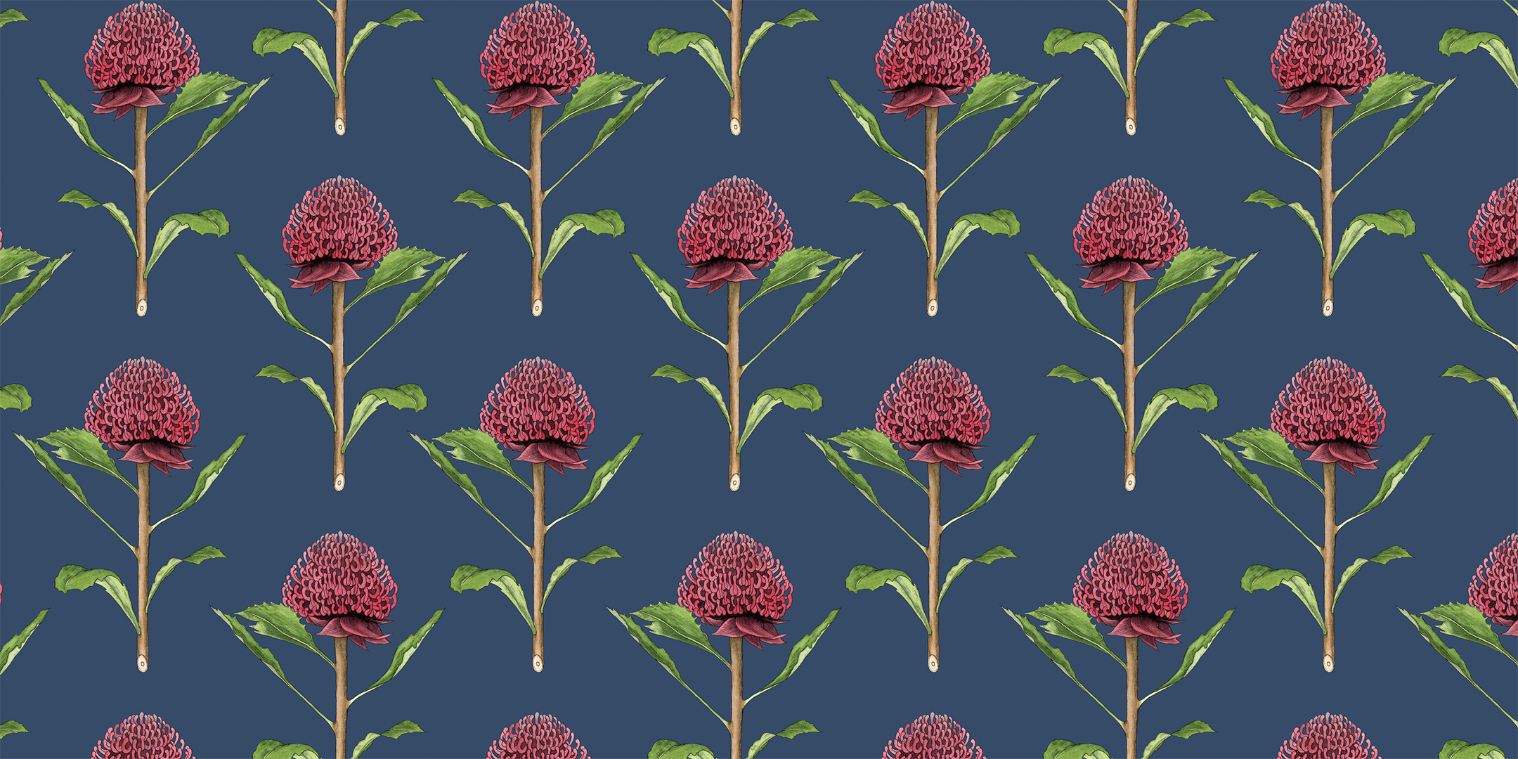 Botanical Waratah -
