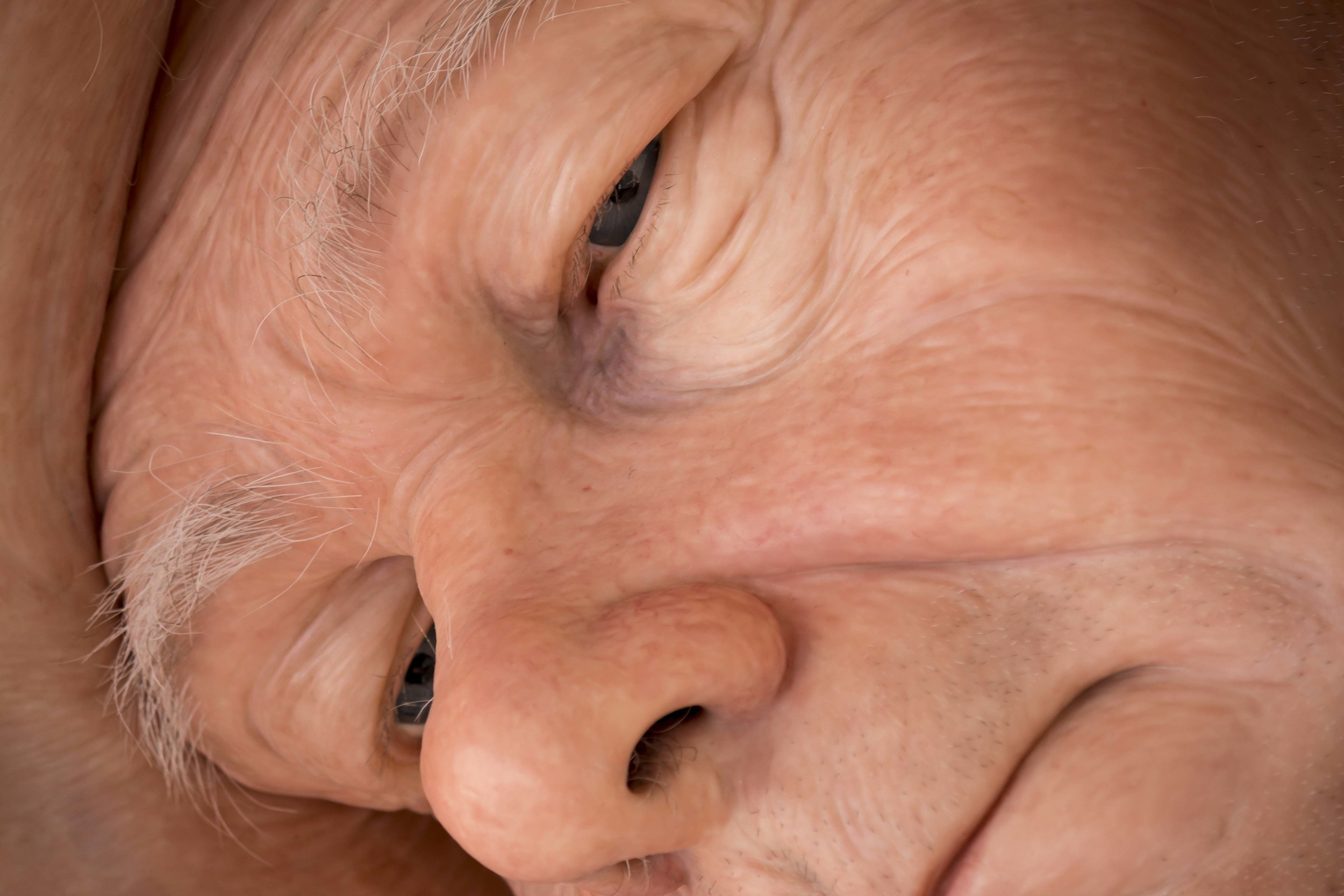 Ron Mueck 26