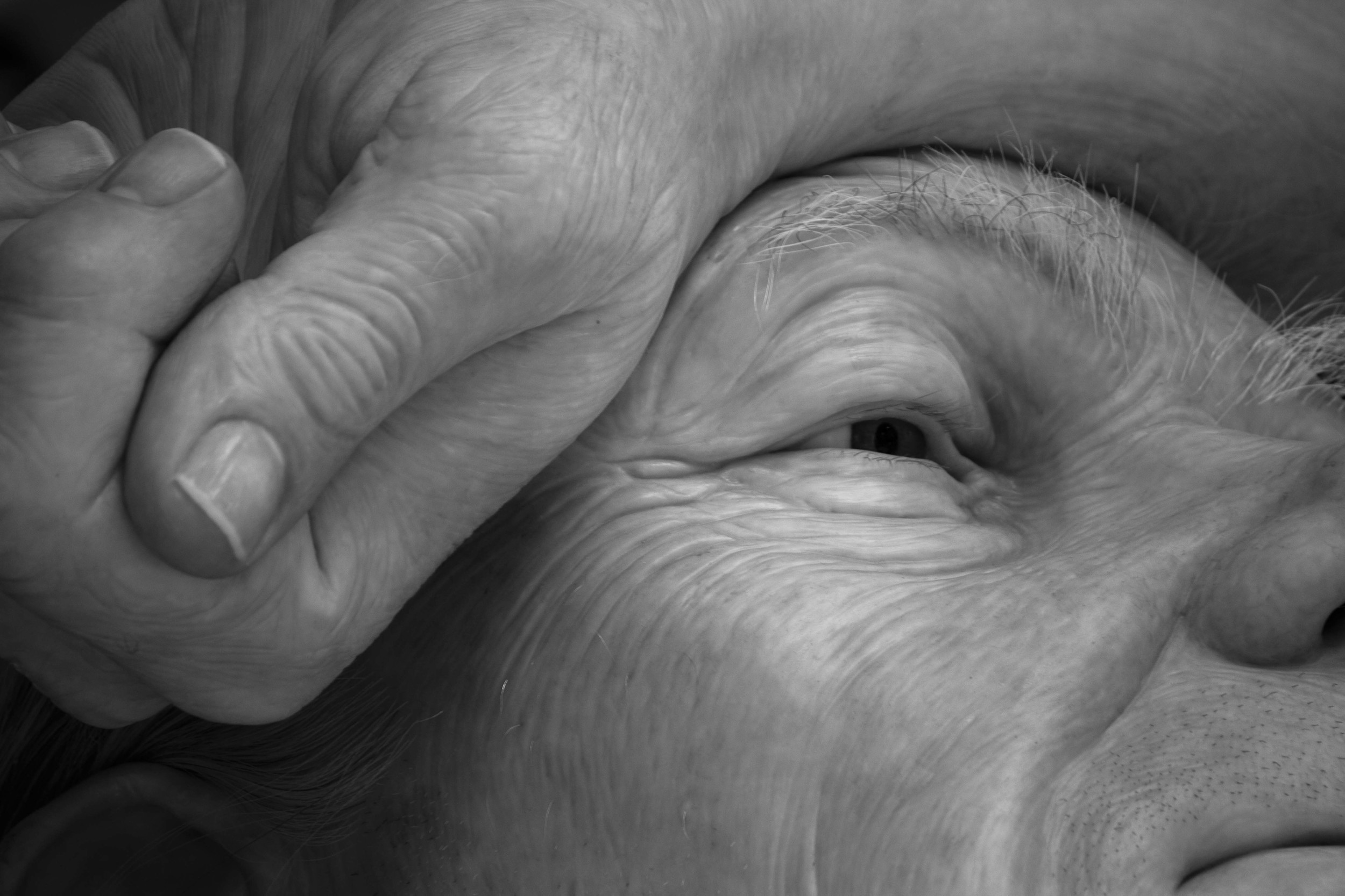 Ron Mueck 34