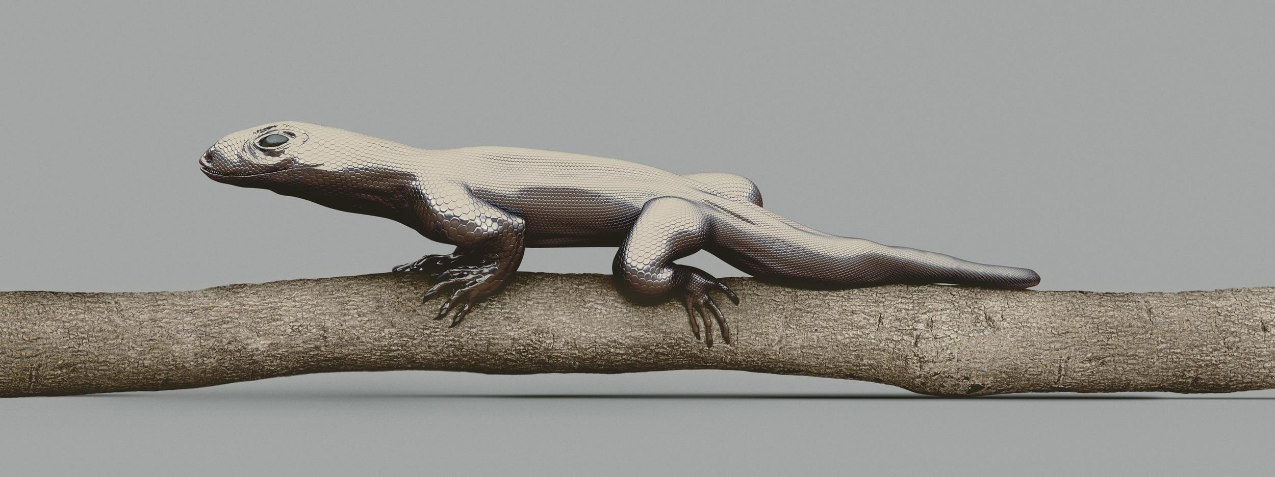MONITOR LIZARD   [Varanus imitabilis]    120 x 45 cm. / 47.24x17.71 inch.