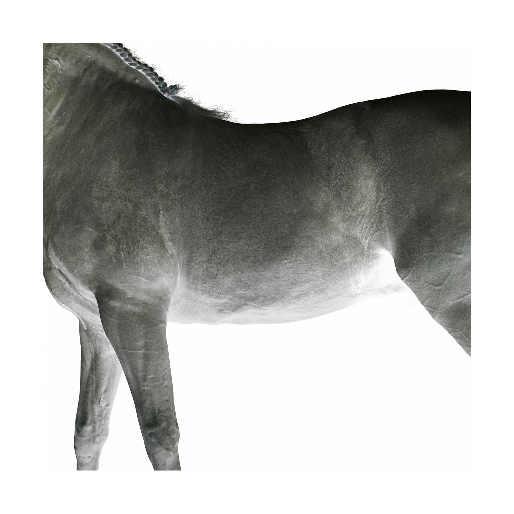 Partizan-3 (negative).jpg
