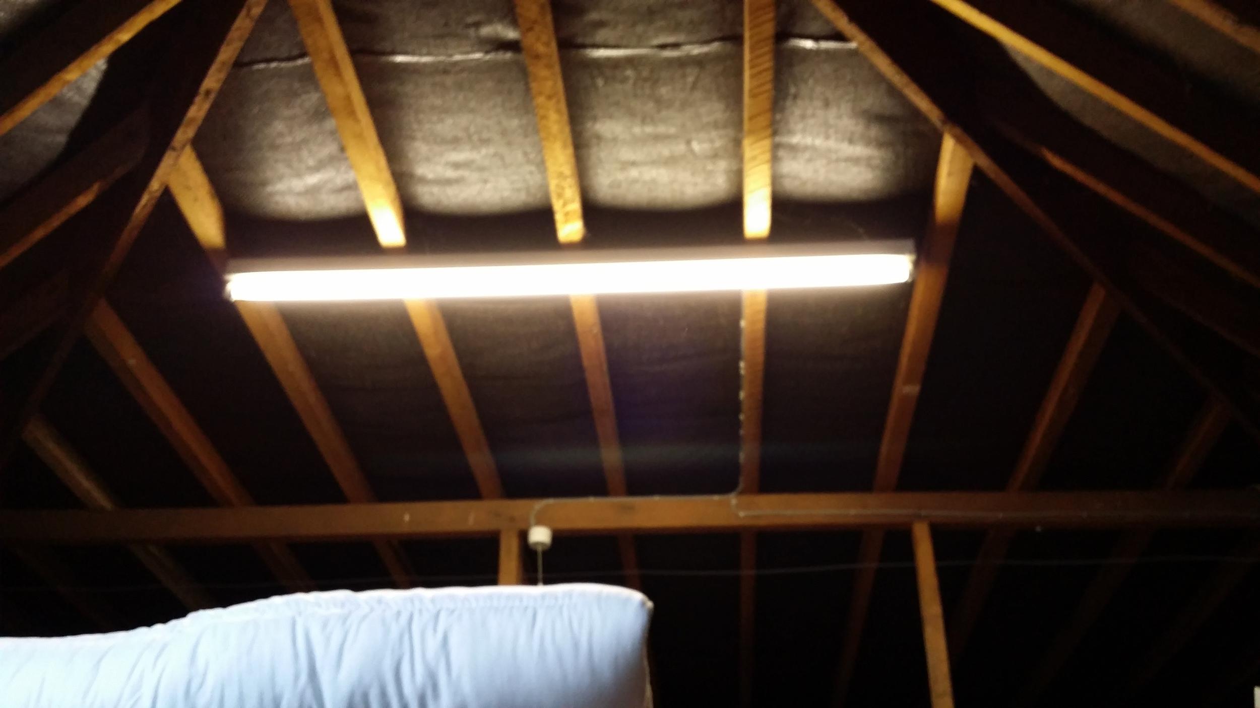 Pre Conversion - Loft Space - Rear East Roof Slope