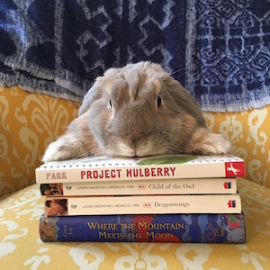 Izzy is always recommending books. Have you read these books by Linda Sue Park, Lawrence Yep, and Grace Lin? They are fantastic!
