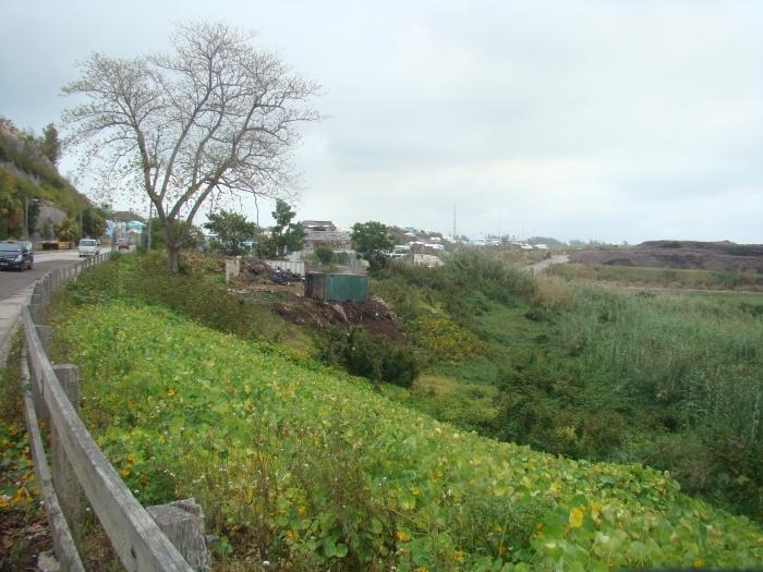 view east along marsh folly.jpg