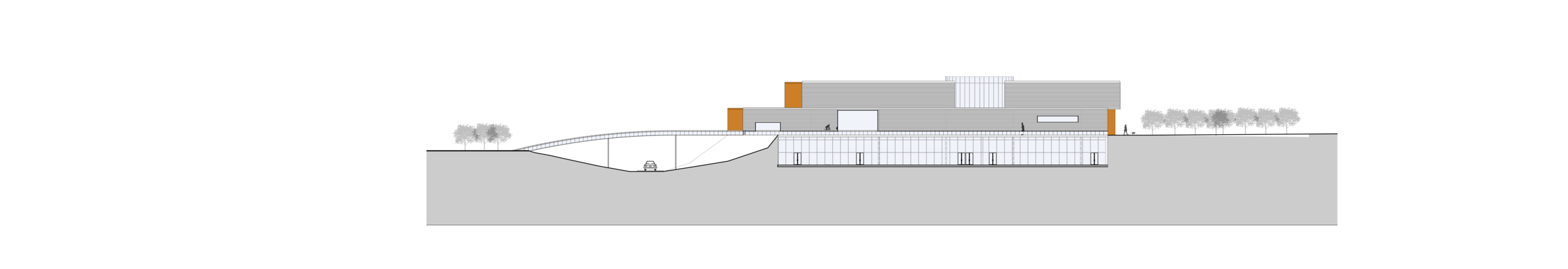 Longitudinal Section through Sculpture Garden and Building Elevation