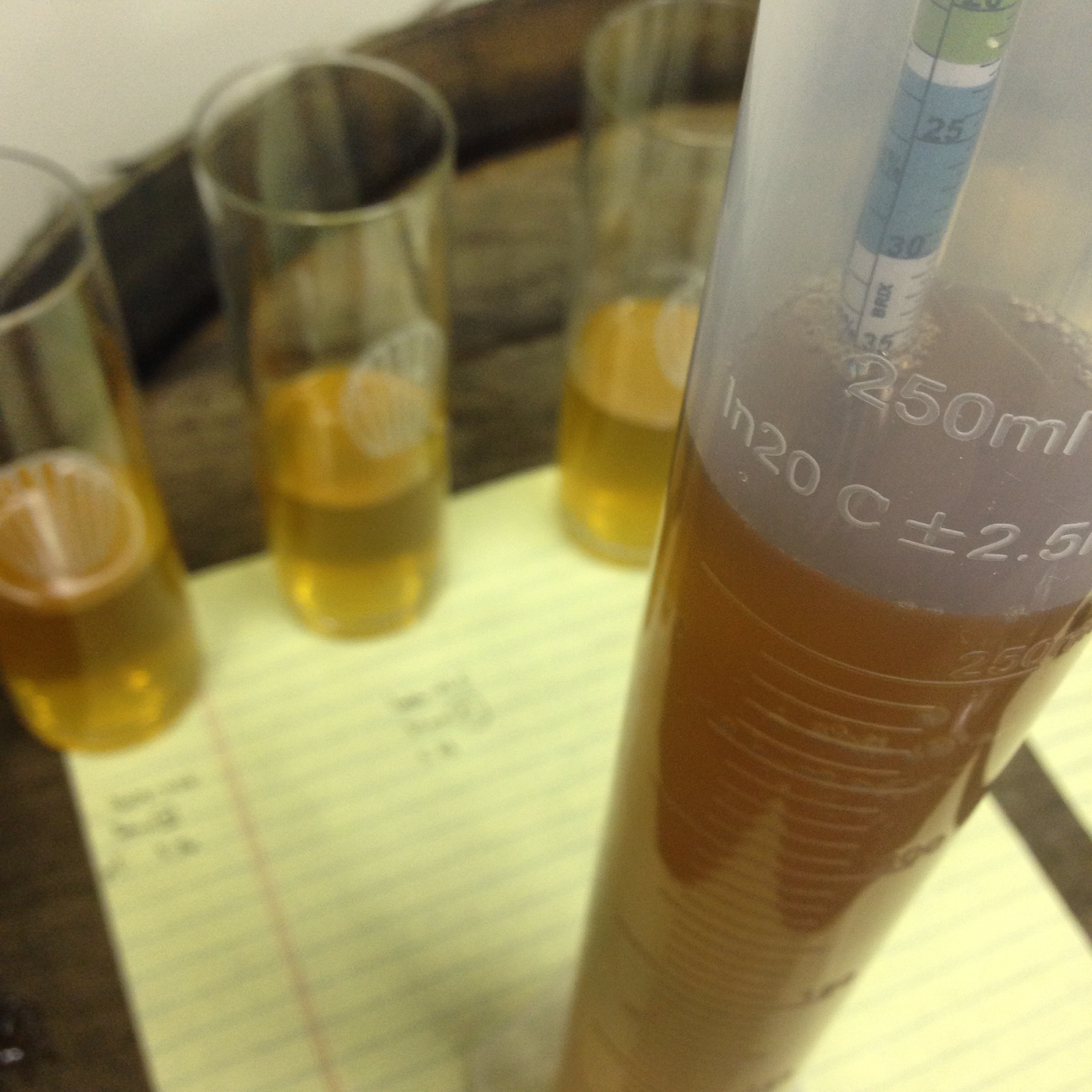 Testing the enormous gravity of the riesling ice wine juice and blending proportionally
