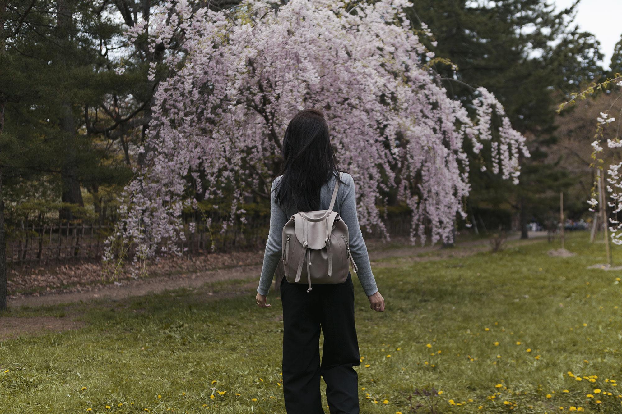 6-things-to-do-aomori-hirosaki-park-jysla-kay.jpg