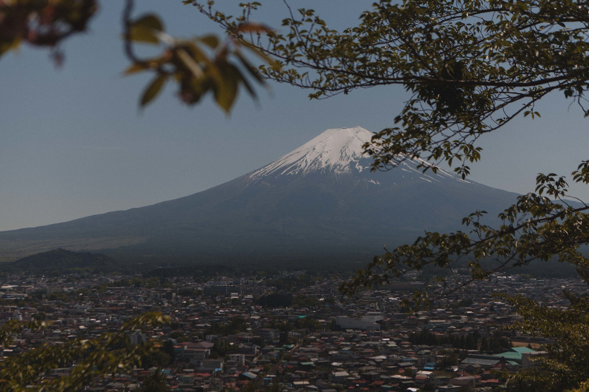 The view of Mt. Fuji from Chureito Pagoda