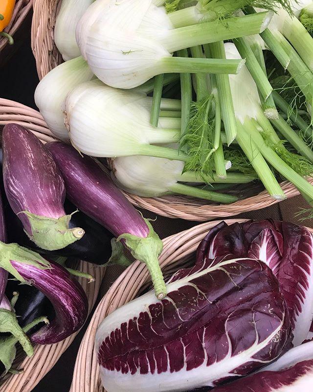 Market day. Fall fennel looking fine.💛