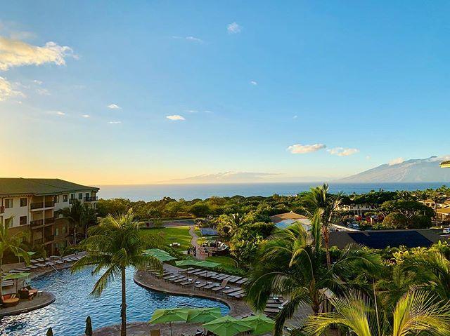 Maui wowie.