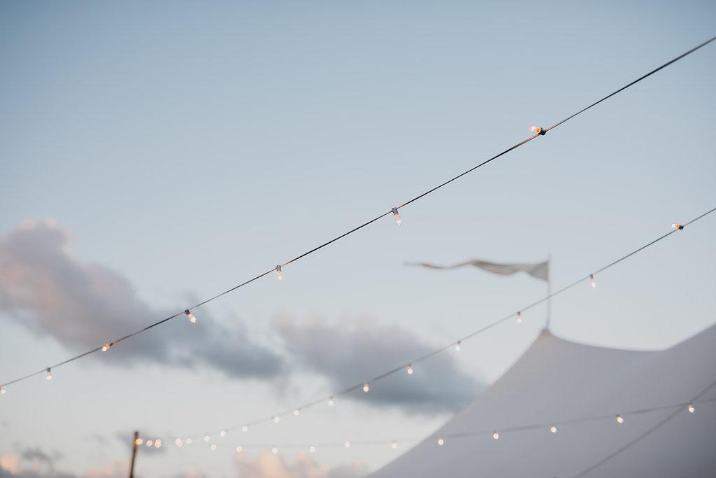 Outdoor Festoon Lights | $530 Set | 100mtrs