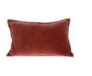 Burnt Orange Velvet Cushion | $12ea | Qty 2