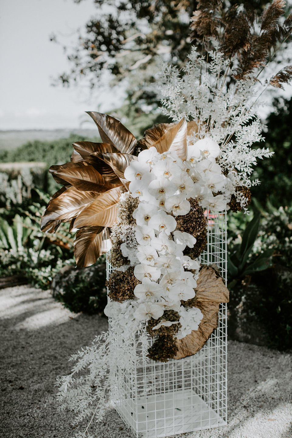Beck Rocchi Photography | Wilderness Flowers I Featuring our new White Mesh Plinth