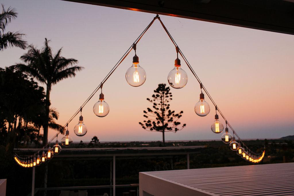 Large Edison Bulbs x 40 V shape I $490 I Fig Tree Package