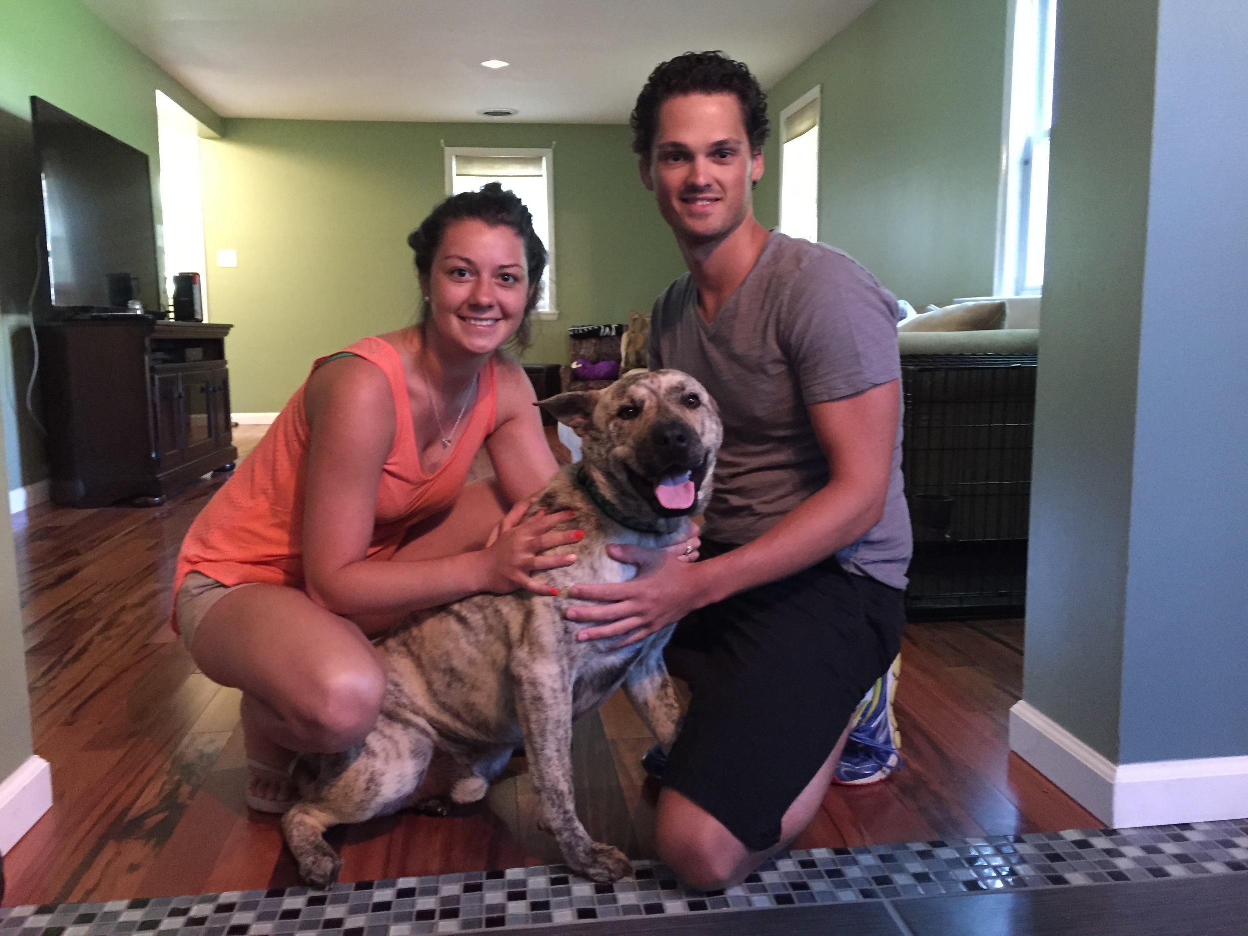 Titan found his furever home with Nermana and Matt!