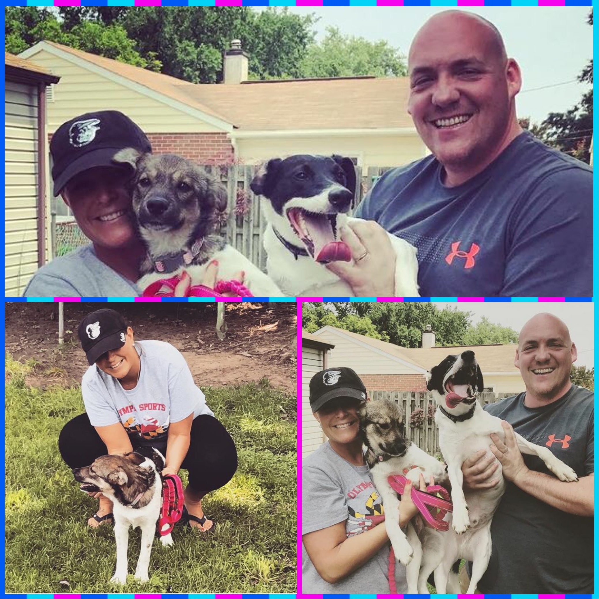 Blossom went to her awesome furever with the Hallameyer family! <3