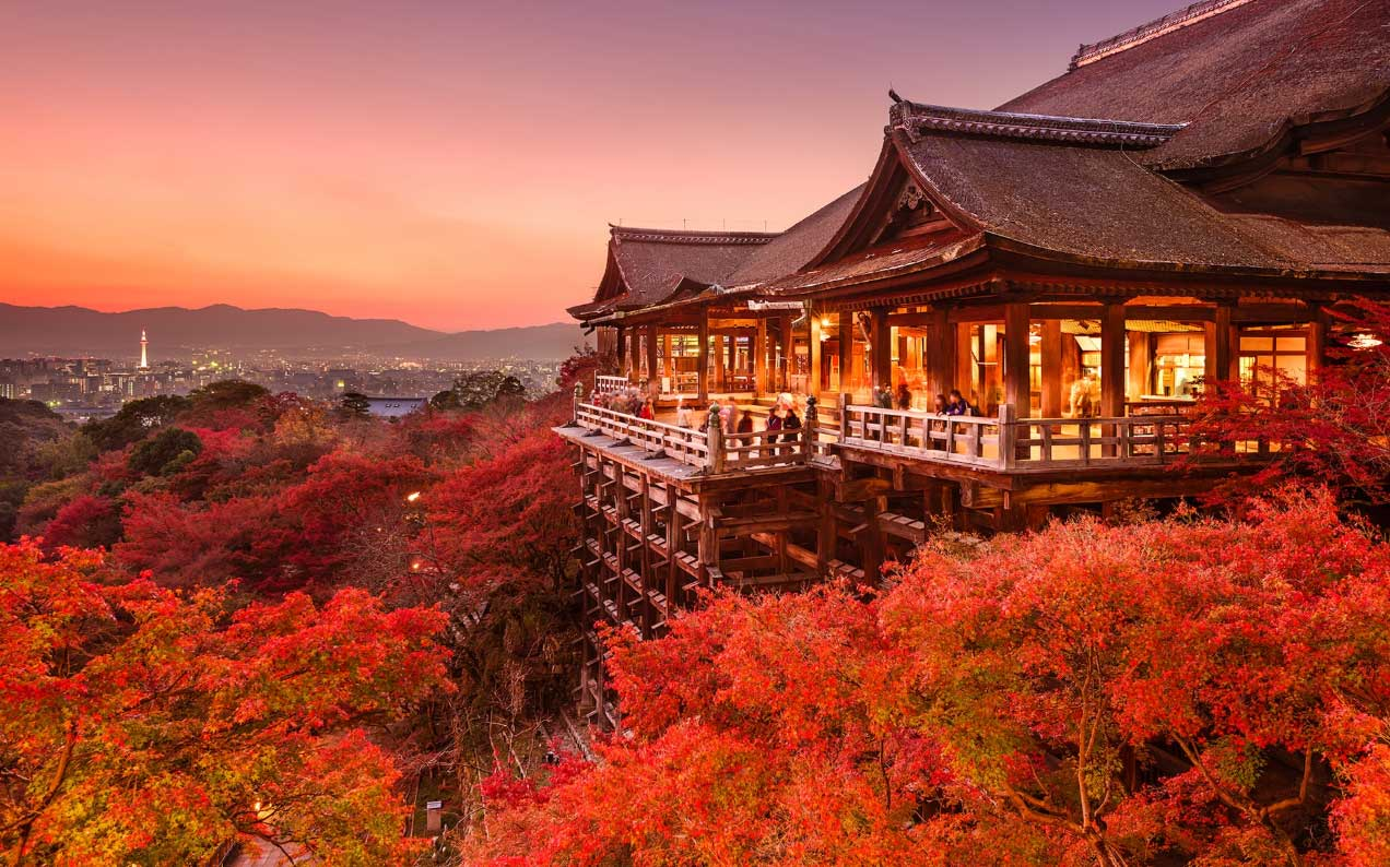 07 Kyoto's Autumn Leaves.jpg