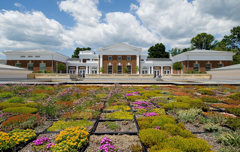 University of Virginia McIntire School of Commerce    Green Roof