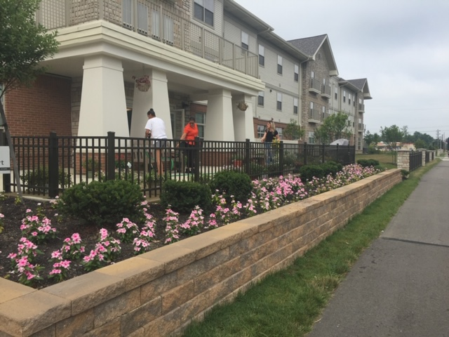 Hamilton Crossing flower beds refreshed with pansies from AmericanHort's Cultivate 19 convention.