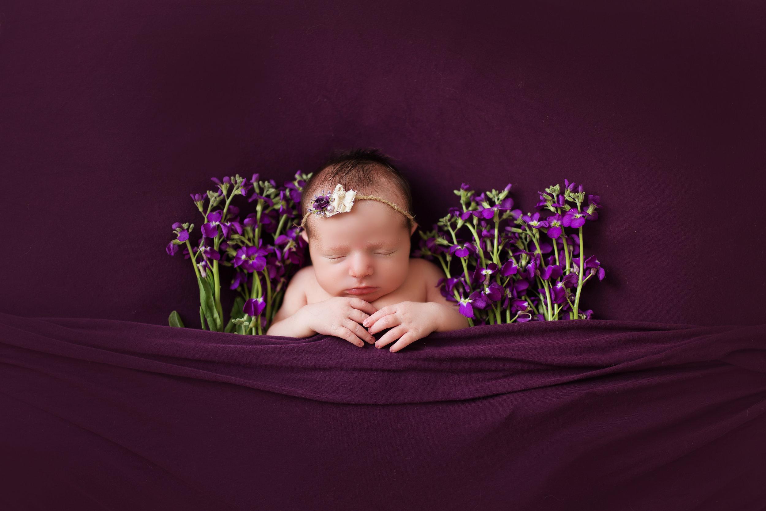 VioletNewborn-66 copy.jpg
