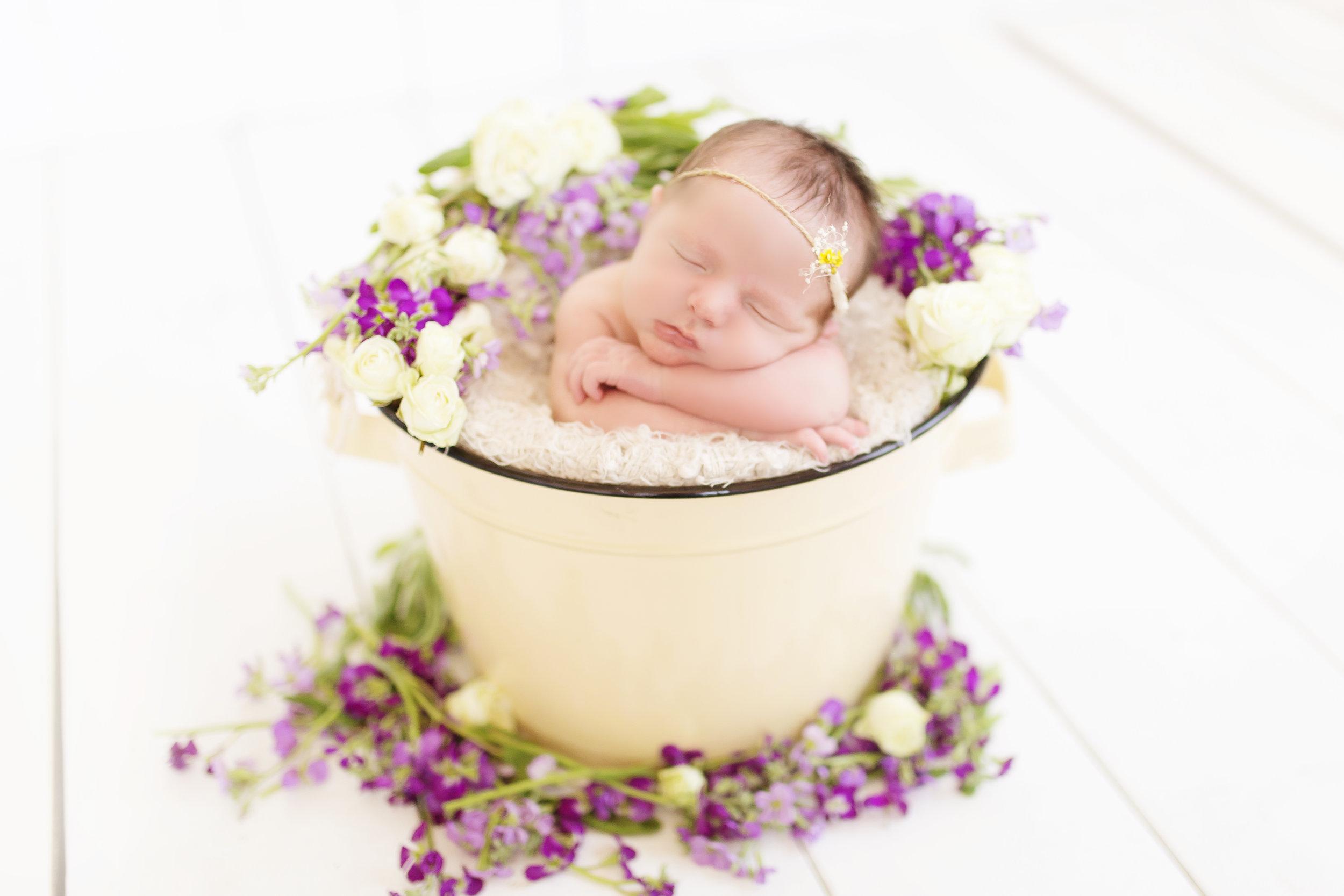 VioletNewborn-127 copy.jpg