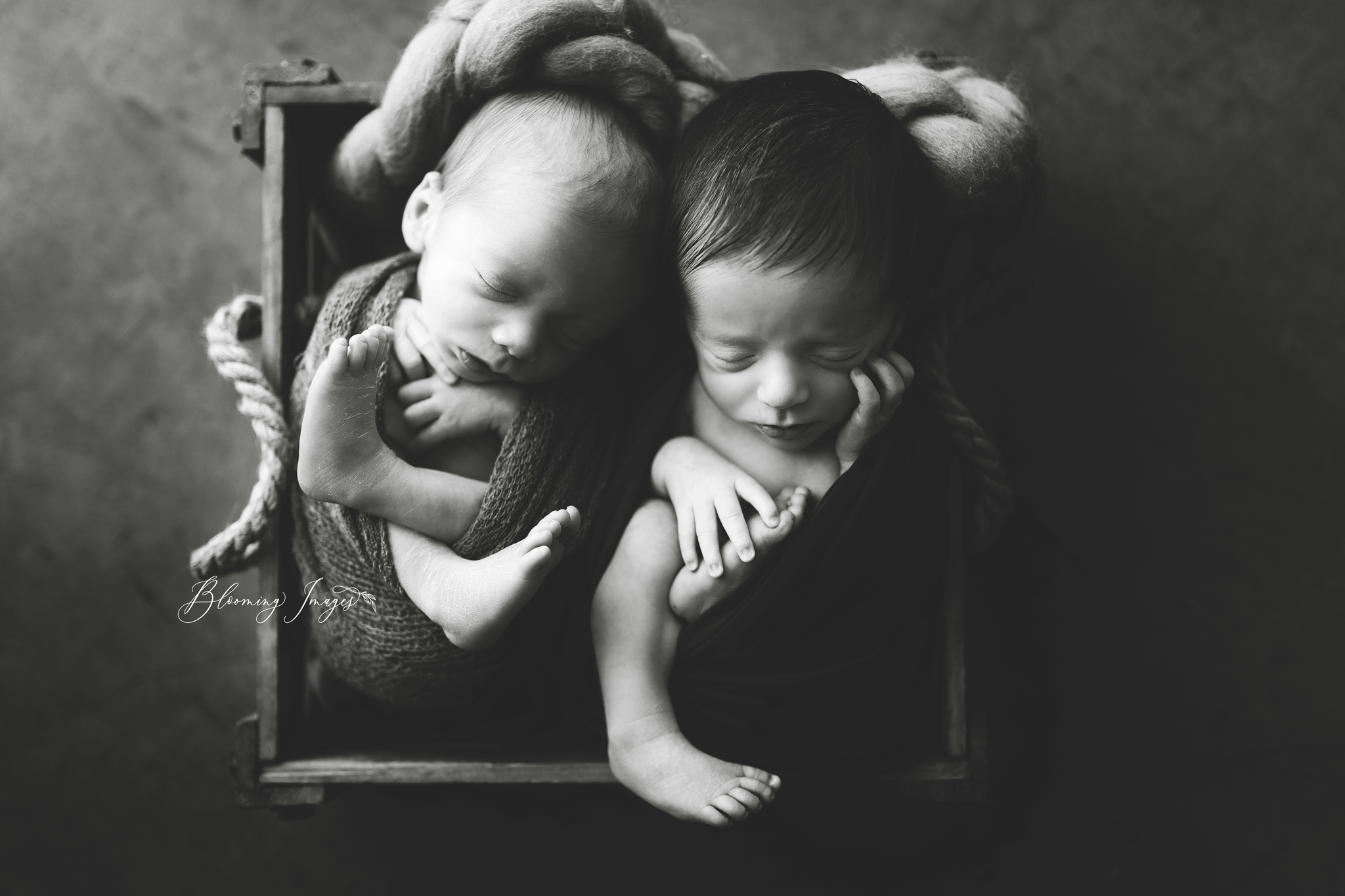 Twin Newborn-53 copy copy.jpg