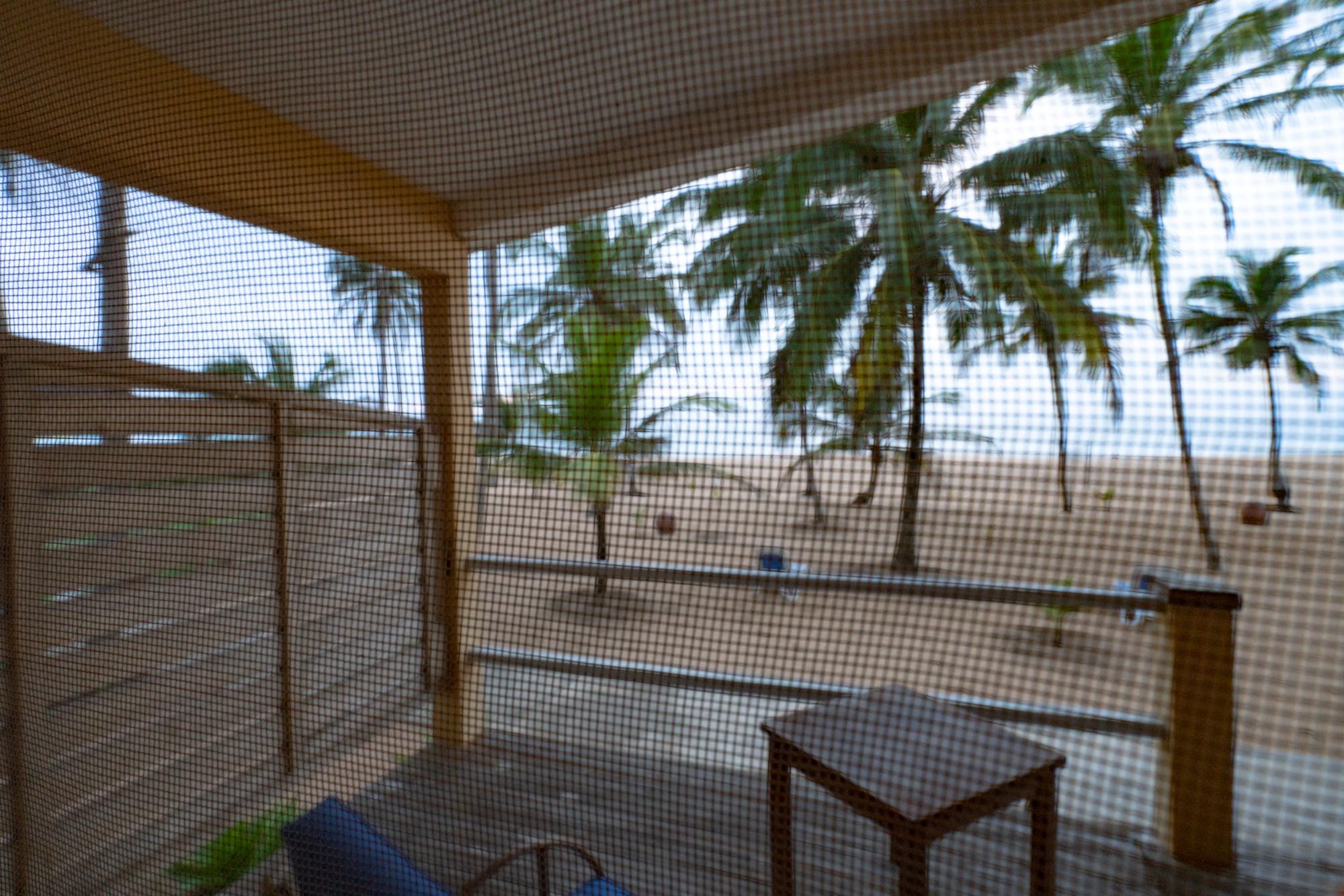 Benin_2000 sin título2018-00181 7952 x 5304.jpg