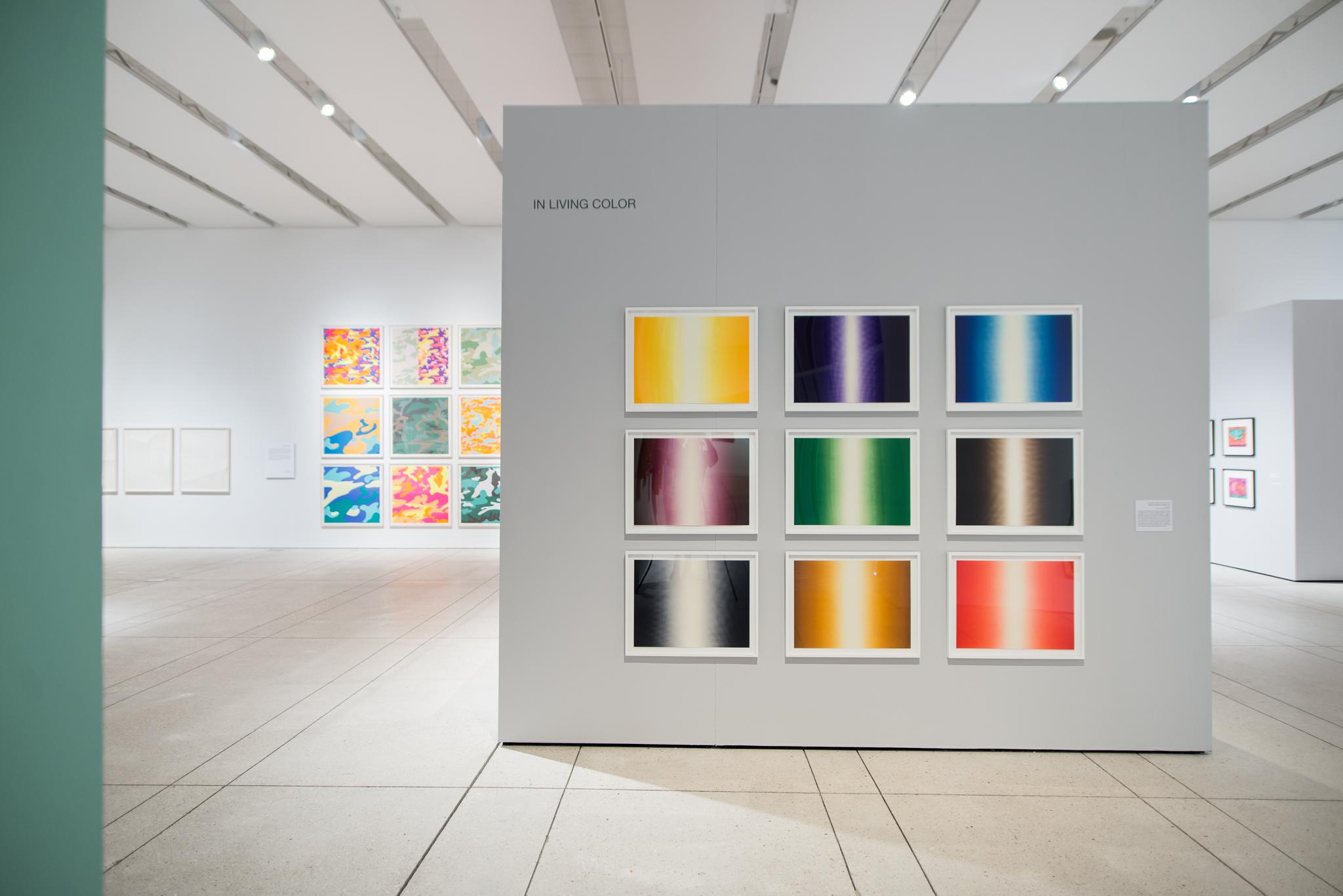 tampa museum--in living color, 23.jpg