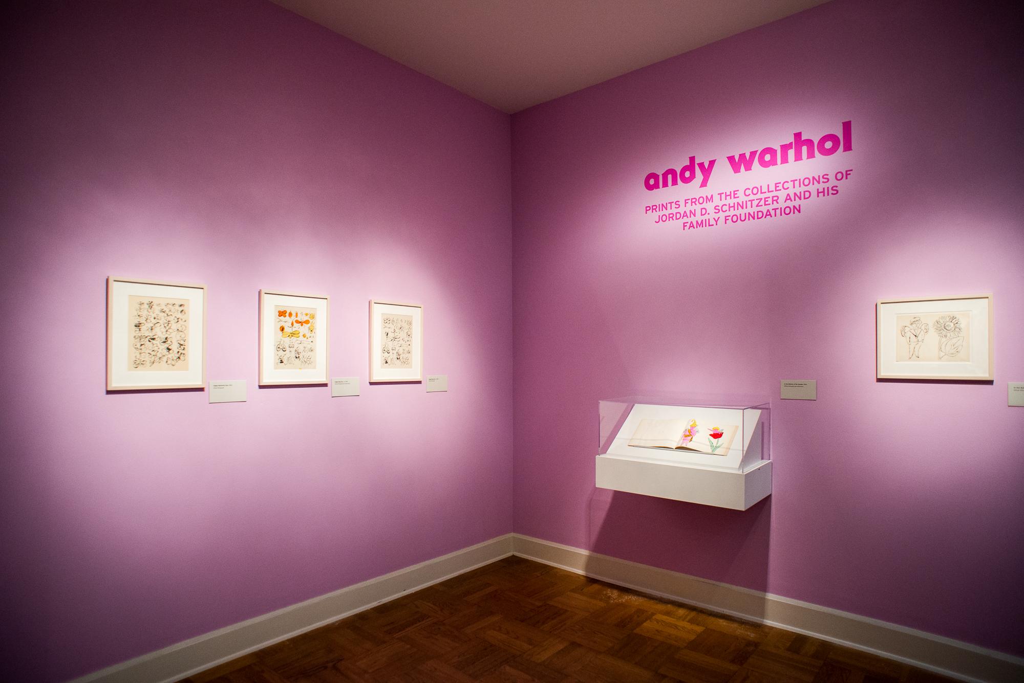 Warhol-Press-Preview-PAM-2016-5.jpg