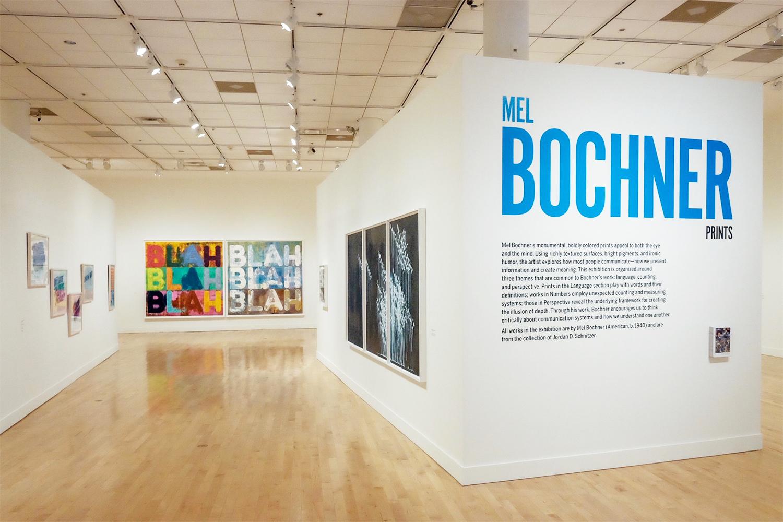 Amazing!: Mel Bochner Prints