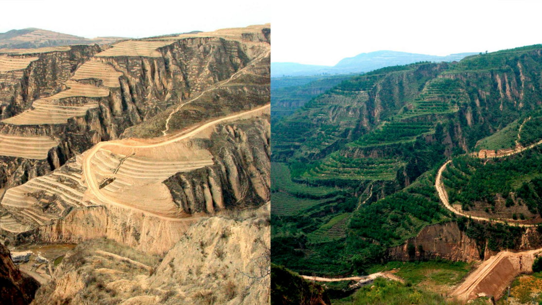 Before and after shots of the Loess Plateau  https://www.lush.co.uk/article/lesson-regenerative-agriculture-loess-plateau