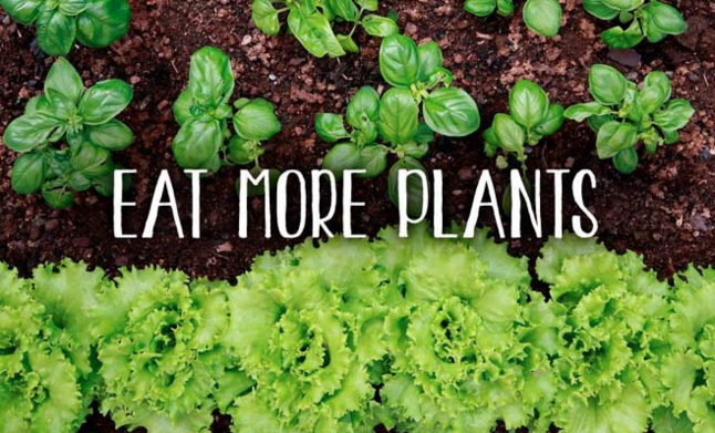 Include  more plants  in your  diet !