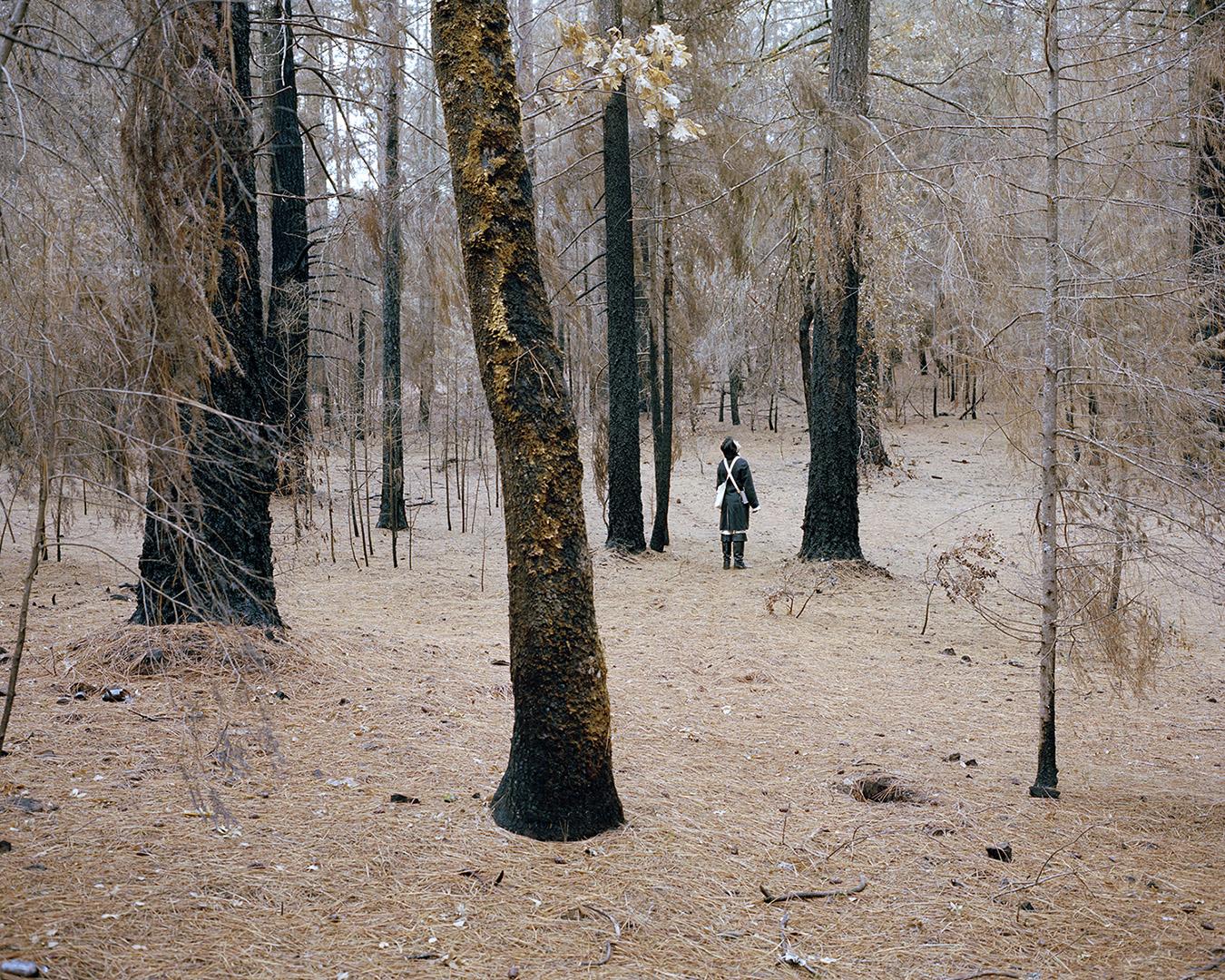 Lance in Bogg Forest.jpg