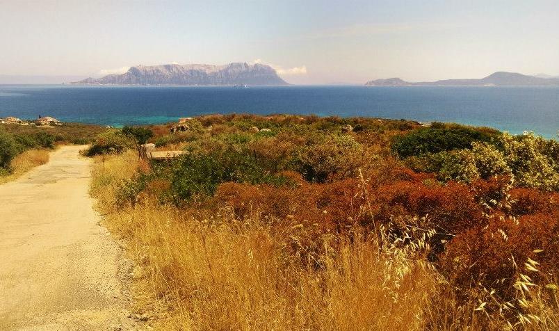 VIEW OF ISOLA TAVOLARA