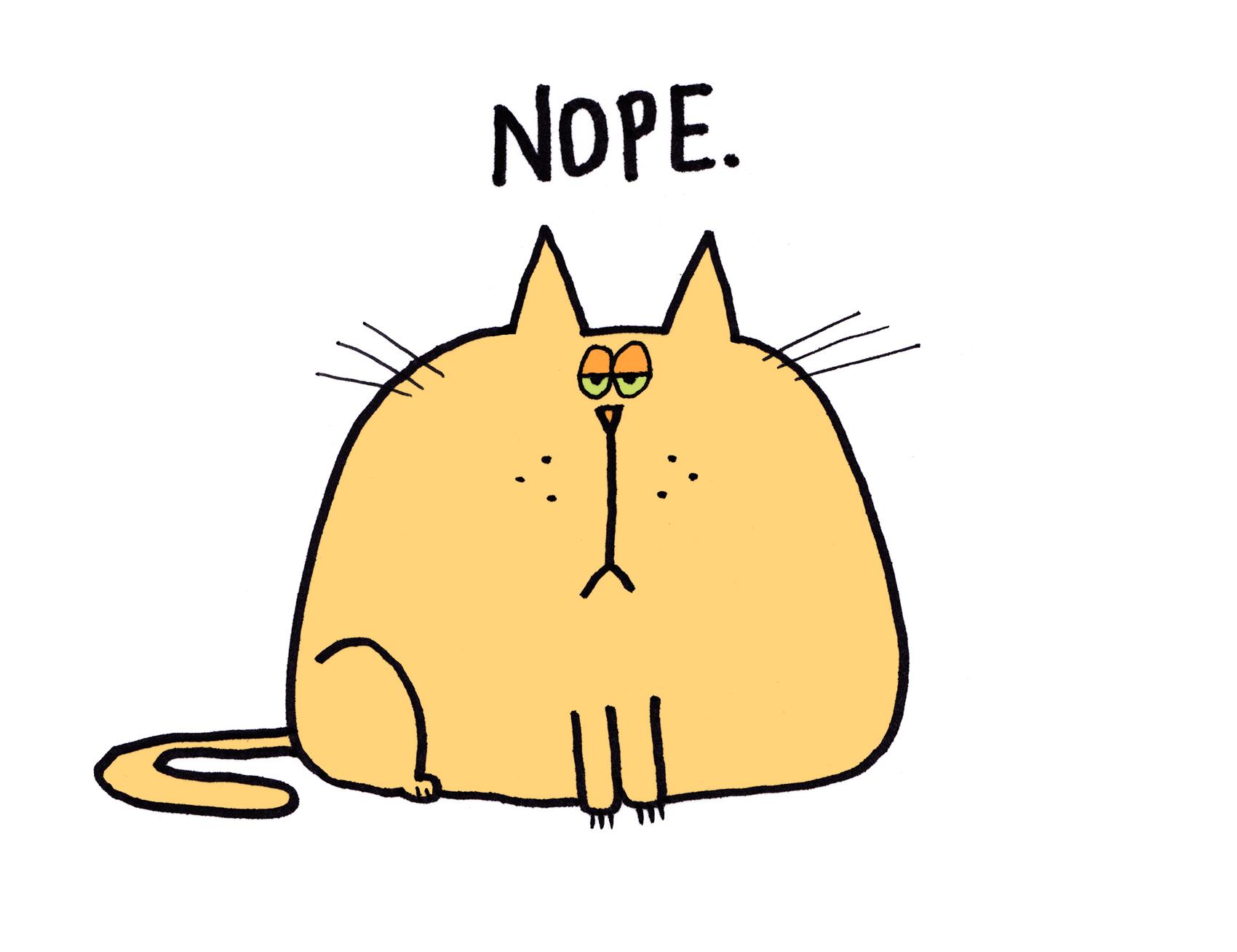 nope_cat_1703.jpg
