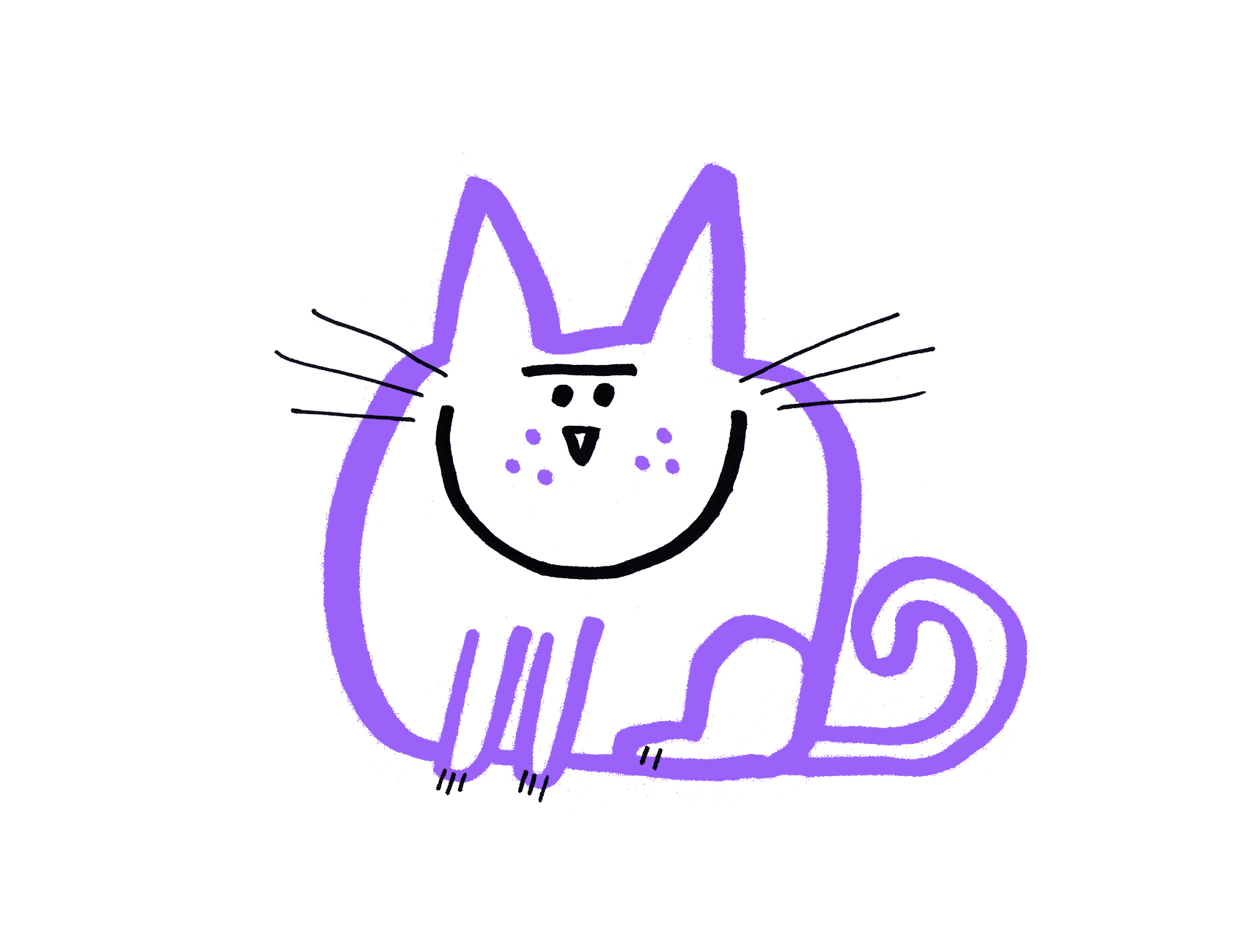 purple_cat_1700.jpg