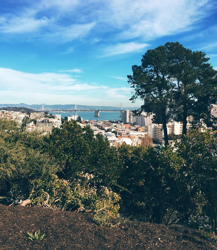 Ina Coolbirth Park - tucked among some of the most spectacular homes offering views of Coit Tower, Bay Bridge & Oakland, and the Financial District