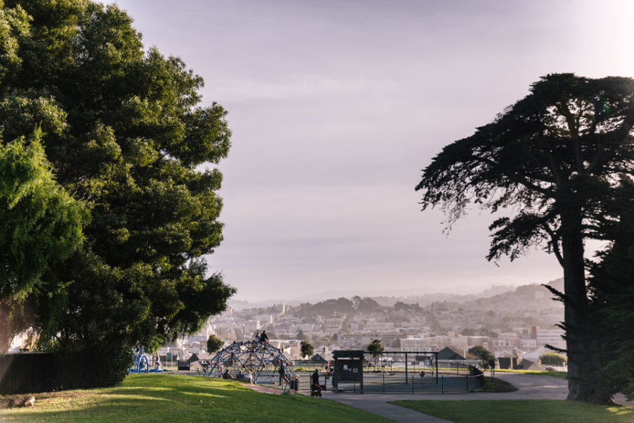presidio-heights-what-to-expect-1.jpg