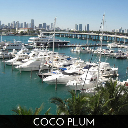 coco_plum_miami_real_estate_vachi_askowitz_realtor_homes_for_sale_3.jpg