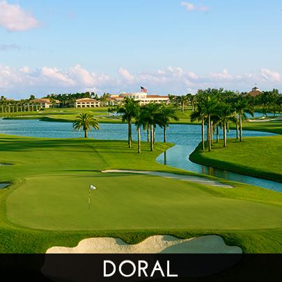 doral_miami_real_estate_vachi_askowitz_realtor_homes_for_sale_3+(3).jpg