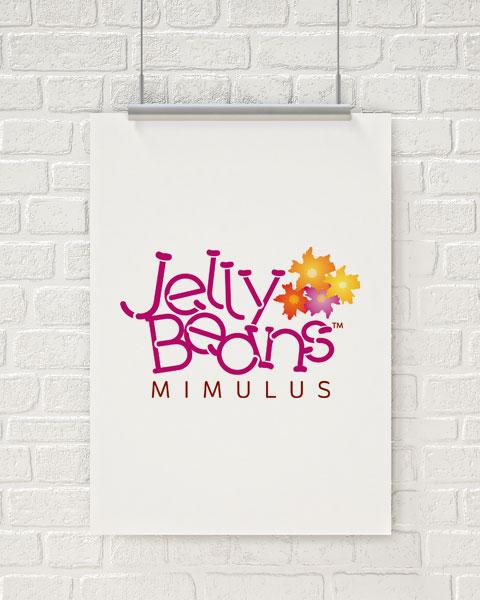 Jelly Beans Logo