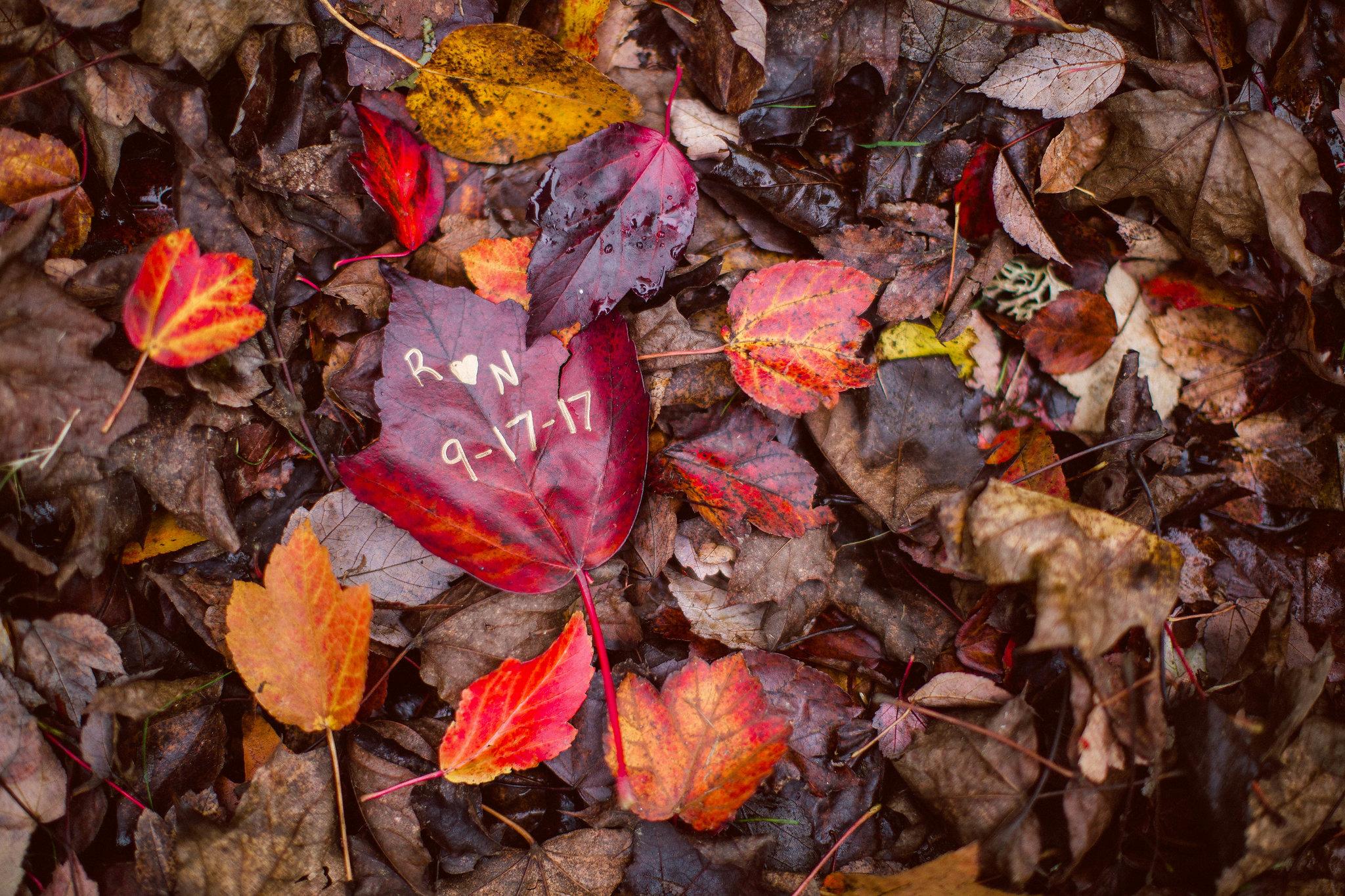 sara-sean-gold-creek-pond77-engagement-by-Seattle-Wedding-Photographer-Adina-Preston-.JPG