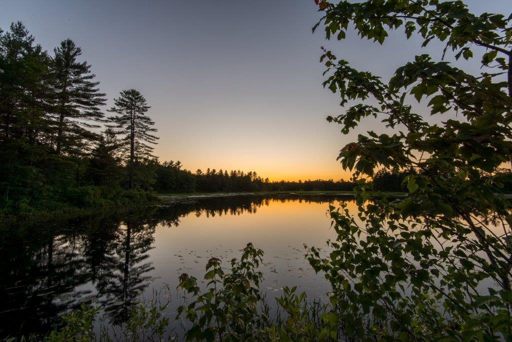 Kimball Pond at sunset