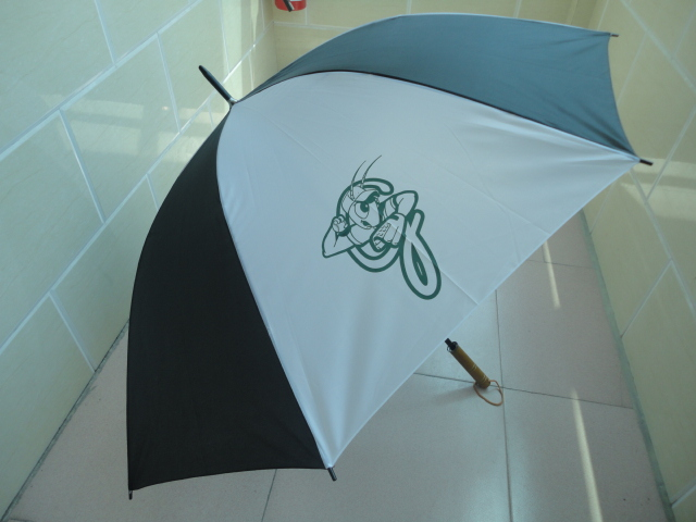 Greensboro Grasshoppers - Umbrella.JPG