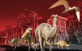 Night at the Museum (6-10pm)