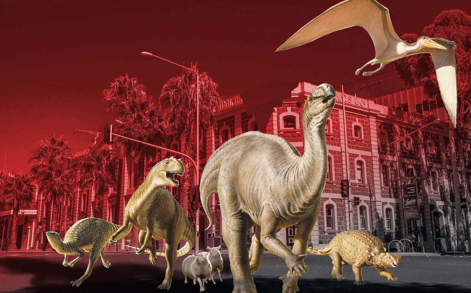 The National Wool Museum will be open 6-10pm this year at Geelong After Dark and has an exciting array of surprises brewing within the depths.